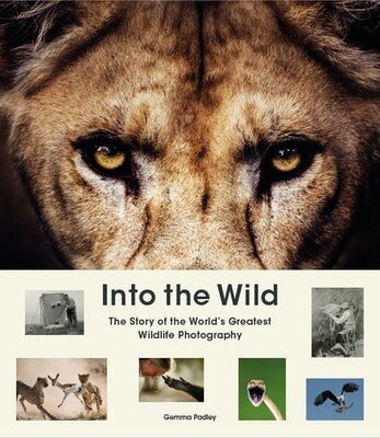 Into the Wild by Gemma Padley