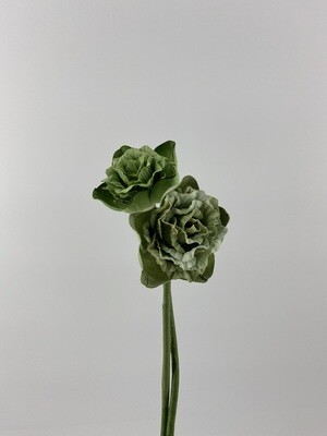 Desert Flower Green