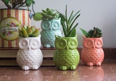 Owl Magnet Vase