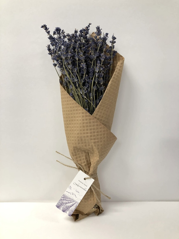 French Lavender Bundle
