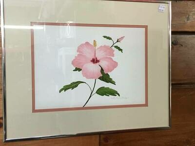 Framed Art - Pink Hibiscus - Betty Curley Badger