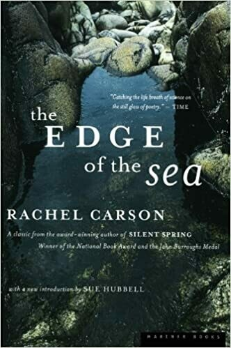(USED) The Edge Of The Sea (Paperback) by Rachel Carson