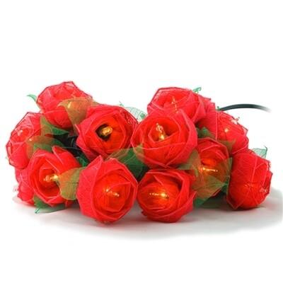 String Lights, Roses