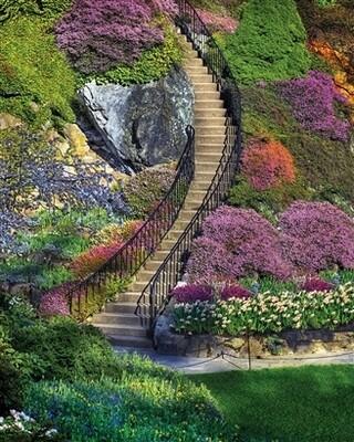 Garden Stairway 350pc