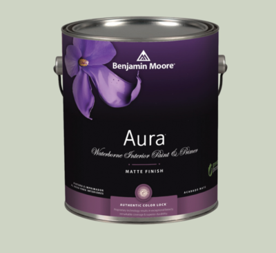 Benjamin Moore - Aura Waterborne Interior Paint in Hollingsworth Green
