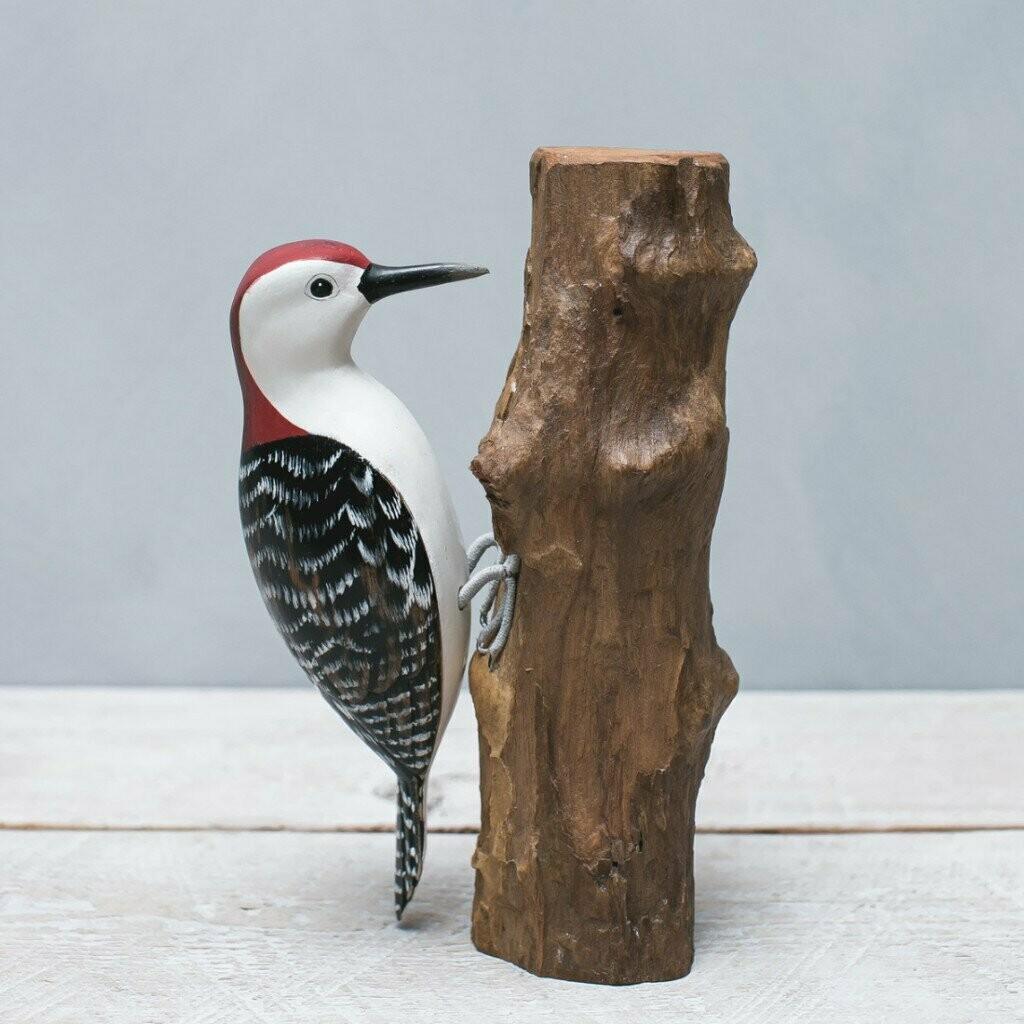 Woodpecker - Red Bellied - 9.5