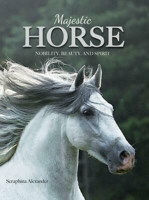 Magestic Horses