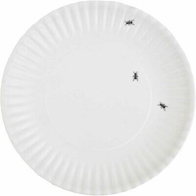 Ants washable