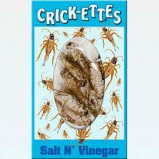 Crick-Ettes Salt N Vinegar
