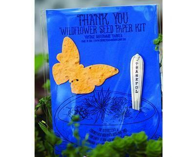 Wild Flower Seed Kit
