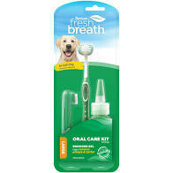 Fresh Breath Dental Kit Lg (Reg $16.99)