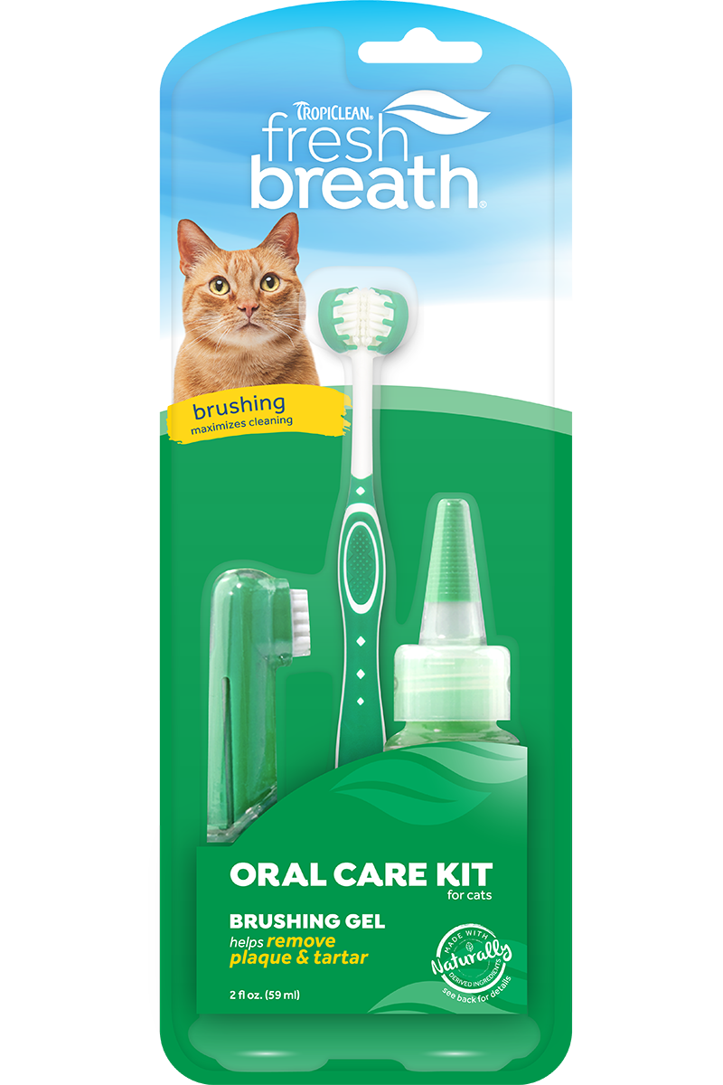 Cat - Fresh Breath Dental Kit