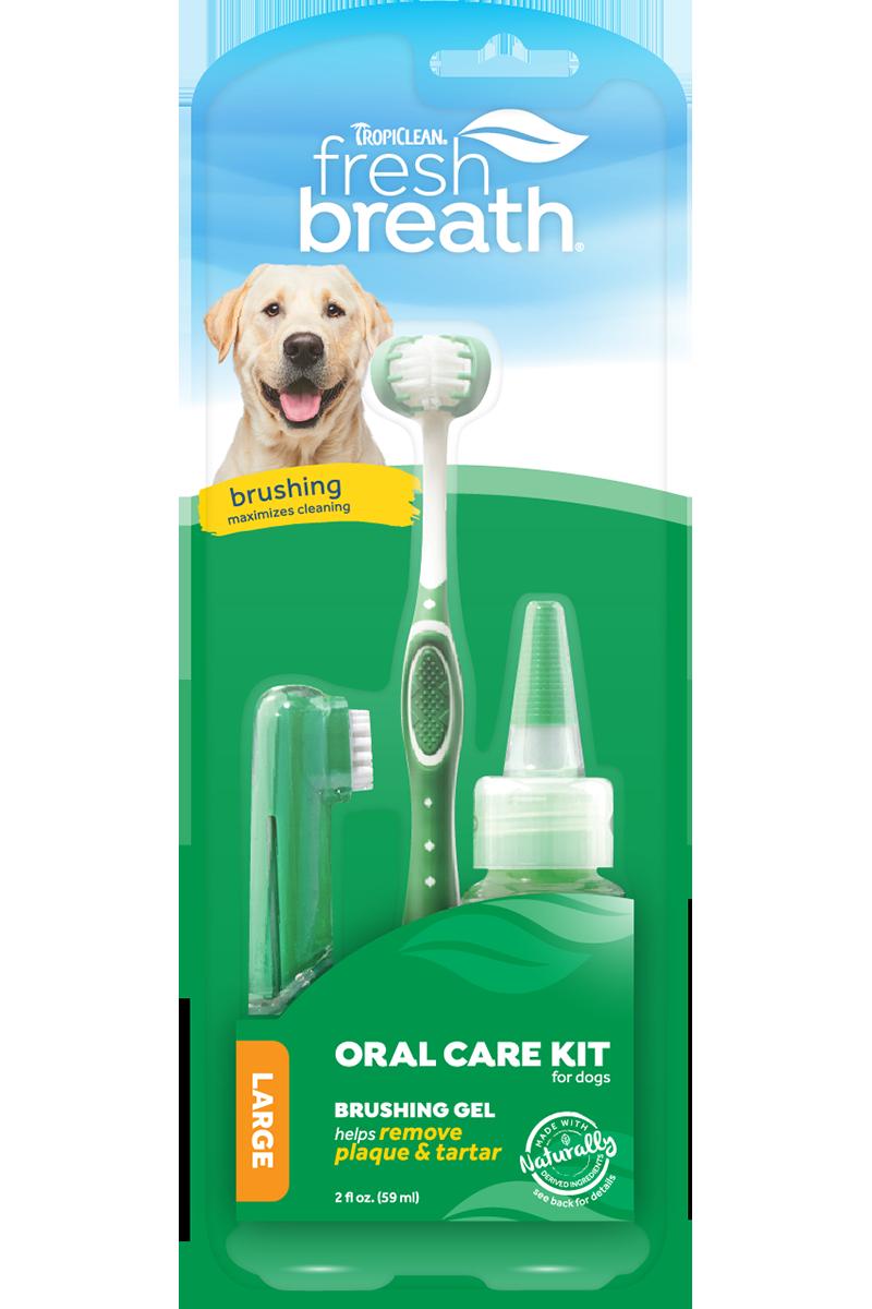 Fresh Breath Dental Kit Lg