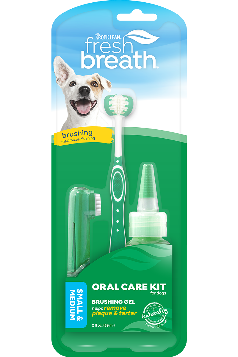 Fresh Breath Dental Kit Sm