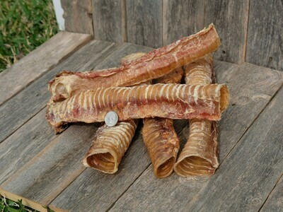 Harbor Hound Trachea Chew