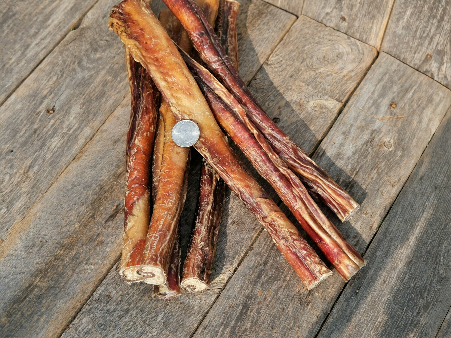 Harbor Hound Bully Sticks 12 inch