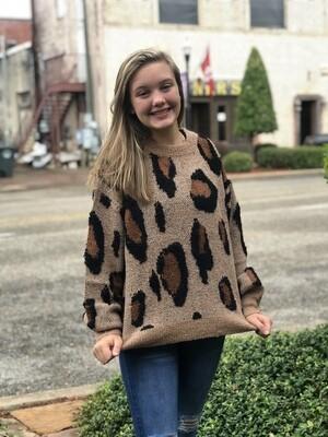 Cheetah Print Wool Sweater