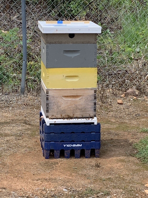 10/22/2020 Bee Class 6:15pm-8:15pm