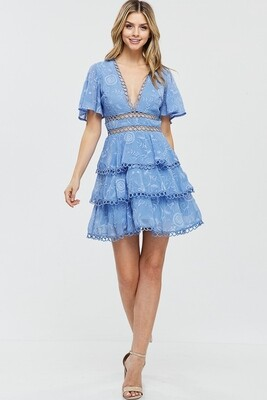 Blue Bell Embroidery Mini Dress