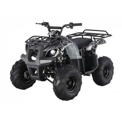 Tao D125 ATV