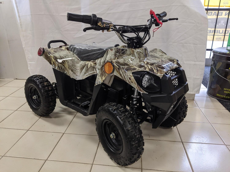 500W Electric ATV