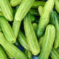 White Cucumber Lime Balsamic Vinegar