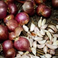 Shallot Garlic Olive Oil