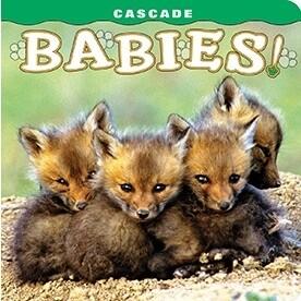 Cascade Babies