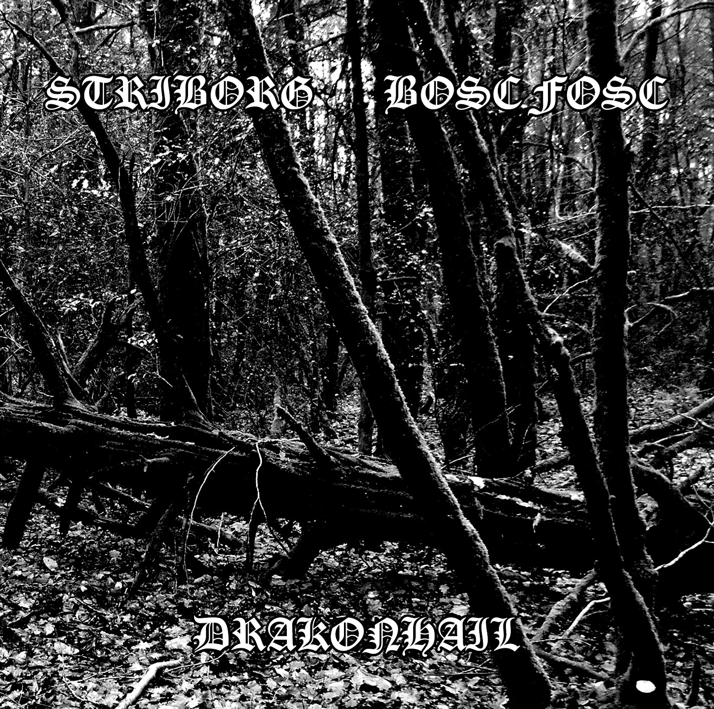 STRIBORG / BOSC FOSC / DRAKONHAIL - Split