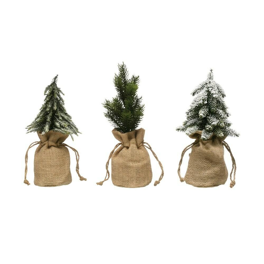 Tree in Burlap Bag