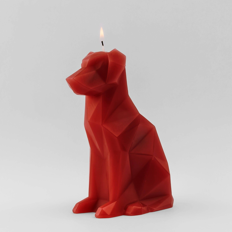 Pyropet- Dog
