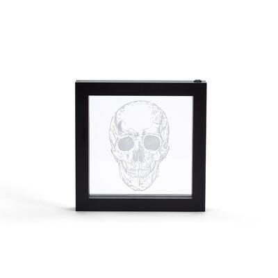 Skull in Box LED