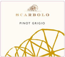 Scarbolo Friuli Pinot Grigio - sustainable