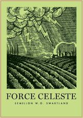 Force Celeste Swartland Semillon - organic