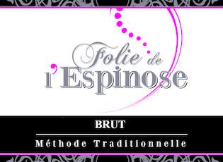 Domaine de l'Epinay Folie de L'Espinose Brut Rose - organic