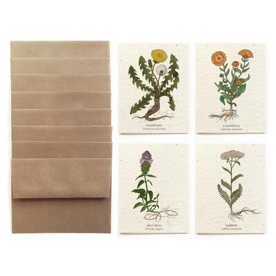 Seeded Cards