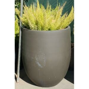 Planter, Large Concrete Cylinder (Brown)