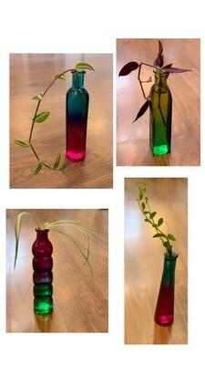 Propagation Colored Vases
