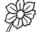 Finde das Blumenpaar
