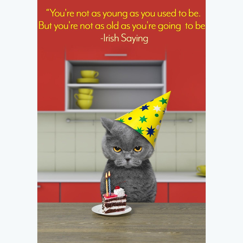 Grumpy Cat Birthday Card