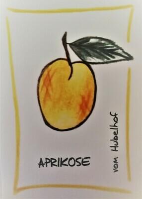 Veredelter Aprikosen Schnaps