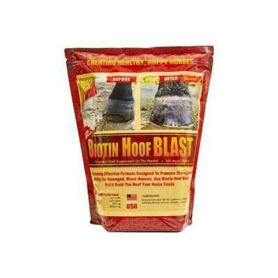 Biotin Hoof Blast 10lb