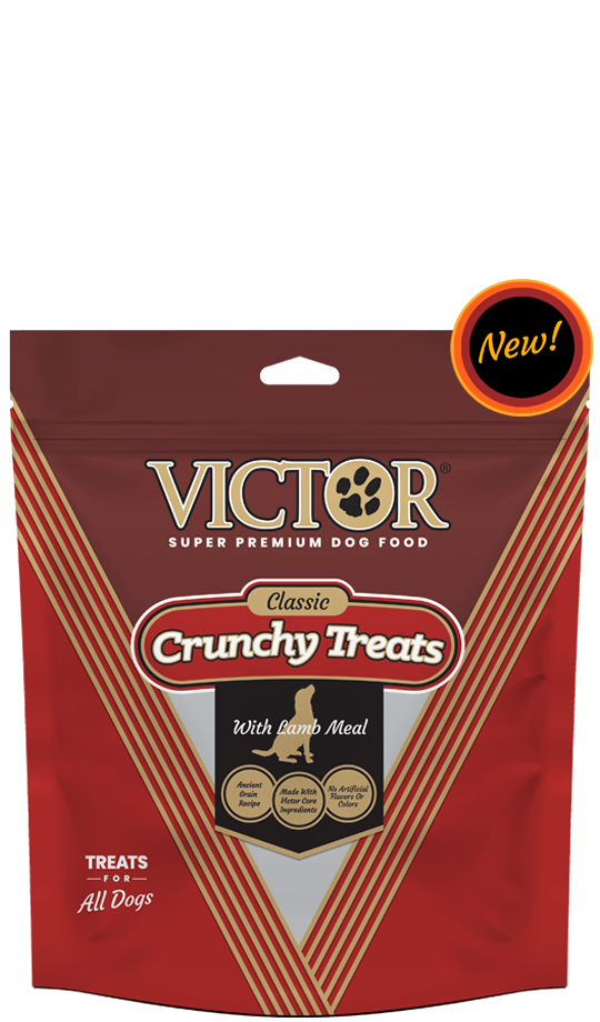 Victor Lamb Treat 14oz