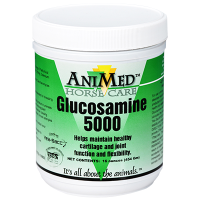 Glucosamine 5000 Powder 16oz