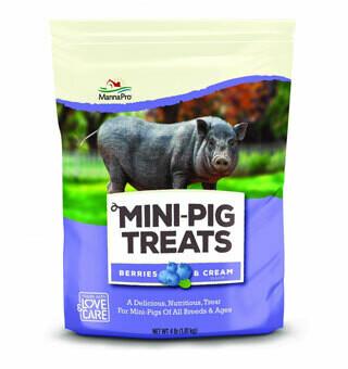 Mini Pig Treats 4lb