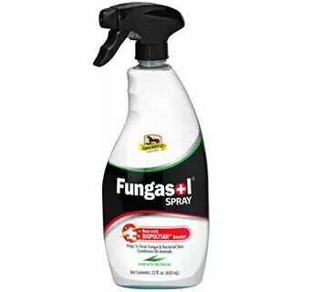 Fungasol Spray 22oz