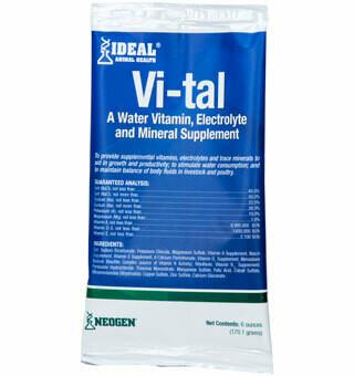 Vi-Tal Electrolye-Supplement