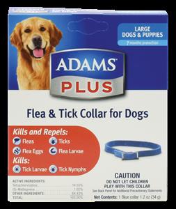 Adams Plus F/T Col. Lg