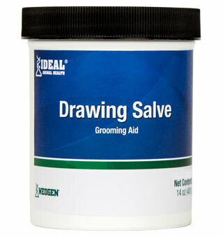 Drawing Salve 14oz