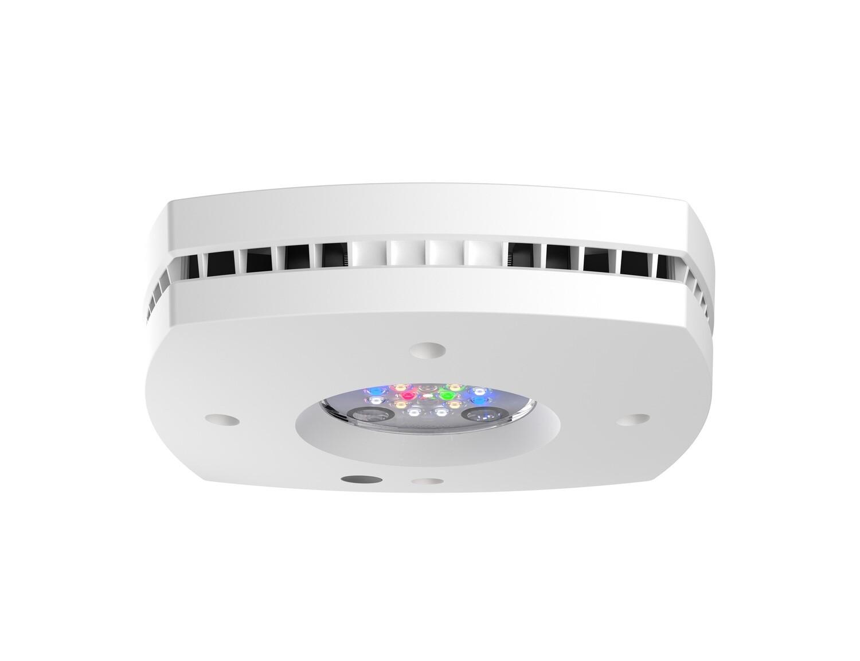 Prime 16HD Freshwater LED